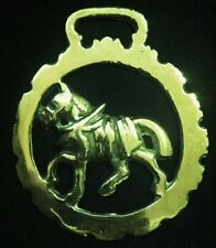 TROTTING HARNESS HORSE DOG TOOTHED FRAME Horse Brass frm England WOW YOUR WALLS!