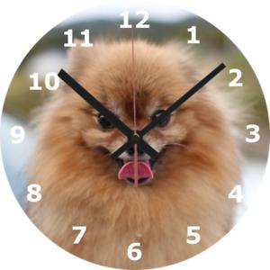 WALL CLOCK DOG 25cm Pet Canine Love Cute Living Room Home Decor Decorating 914