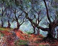 Oil Painting repro Claude Monet -Grove of Olive Trees in Bordighera