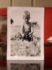 ORIGINAL VINTAGE PHOTOGRAPH 1920's COCKER SPANIEL DOG PUPPY PICTURE Great Pic 52