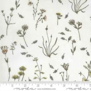 Botanicals 16911-11 Moda Fabrics Wild Flowers In Parchment Janet Clare