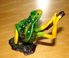 Tree Frog Trinket Box (Wildlife, 3455) Baked Enamel, Australian Crystals