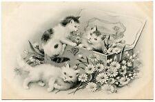 JEUX DE CHATS. FLEURS. CATS. KATZE. FLOWERS