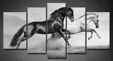 Framed Horse Wall Art Home Decor Black White Horses Canvas Print Animal Pictures