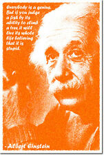 "ALBERT EINSTEIN ART PRINT 2 QUOTE PHOTO POSTER GIFT PHYSICS ""JUDGE A FISH"""