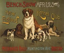 NEW ENGLAND KENNEL CLUB DOG SHOW, 1890 Vintage Poster CANVAS PRINT 28x24 in.