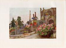 Stampa antica GIARDINI Isola Bella Lago Maggiore 1905 Old print
