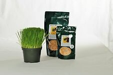 Lucy's Cat Grass, Gourmet and Sweet Buck Oats, 1 pound package