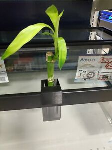 Hang on the back Aquarium planter.  Superior filtration naturally! Plant Filter!