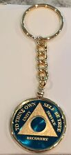 Any Year Or Month Blue 24k Gold Plated AA Medallion Keychain Removable Chip