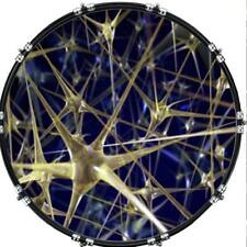"""20"""" Custom Bass Kick Drum Front Head Graphic Graphical Web of Glass"""