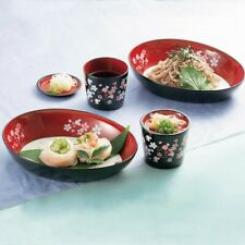 DISNEY Mickey Noodle Bowl Dish Plate Japanese Zarusoba Somen Pair set From Japan