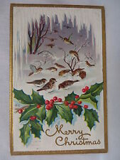 VINTAGE EMBOSSED CHRISTMAS POSTCARD A FLOCK OF BIRDS IN THE SNOW 1911