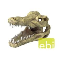 Krokodil Schädel  - Höhle - Tierschädel Crocodile - Versteck - Deko  234-426500