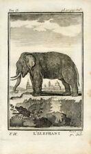 1769 ELEPHANT Antique Copper Plate Engraving Print BUFFON