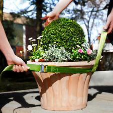 Kübelpflanzen Tragegurt
