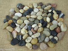 River Rocks Stones Pebbles Vase Filler Aquarium Decoration Wedding Shower Garden