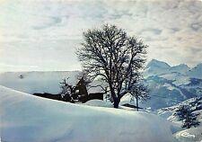 BF248 neige et soleil chalets sous le neige france