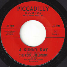 ♫ROCK COLLECTION WITH ROB Sunny Day/Get Ready Piccadilly 243 GARAGE PSYCH ROCK♫
