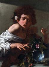 Caravaggio, Boy Bitten by a Lizard, 1594, Art Poster, Museum Canvas Print