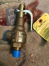Apollo Valves Safety Relief Valve Model 19KDCA100BA