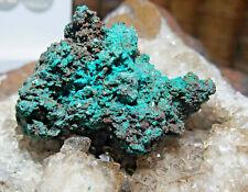 MINÉRAUX COLLECTION     Dioptase du Gabon vert intense 102gr ref H27