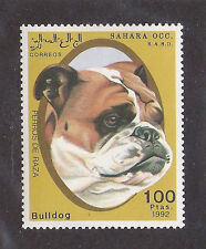 Dog Art Head Portrait Study Postage Stamp ENGLISH BULLDOG Spanish Sahar 1992 MNH