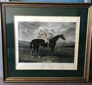 Sain Foin, Winner of the Derby Stakes at Epsom in 1890. Framed print under glass