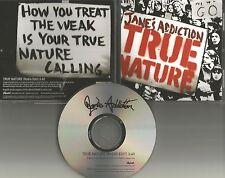 Perry Farrell JANE'S ADDICTION True Nature EDIT PROMO DJ CD single Dave Navarro