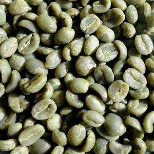 Unroasted Green Coffee Beans, 10 Lbs Kenya AA Nyeri Estate Specialty, 2021 Crop