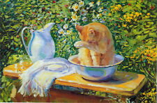 Cat takes bath in the bowl on hot summer day... Modern Russian postcard
