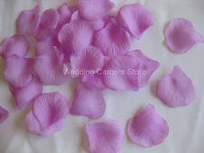 1000 ORCHID silk rose petals wedding party favors, NEW!