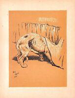 Cecil Aldin.Antique dog print.1912.A dog day.Vintage.Dog.Animal.Print of sketch