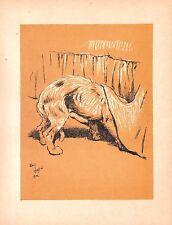 Cecil Aldin. Antico DOG Print .1912.A DOG DAY. VINTAGE. cane stampa animale.. Disegno del