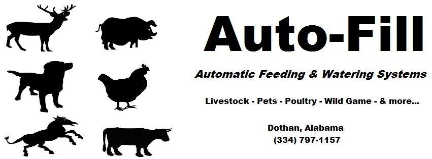 Auto-Fill Automatic Feeding & Water