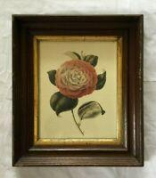 *Antique Victorian Walnut Wood Shadow Box Picture Frame w IBF Flower Print #2