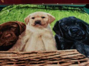 NORTHWEST THROW BLANKET DOGS GREG CUDDIFORD BROWN, WHITE, BLACK 2018 50X60