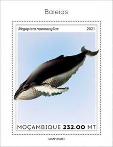 Mozambique - 2021 Humpback Whale - Stamp Souvenir Sheet - MOZ210106b1