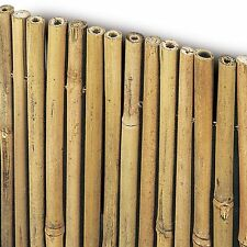 ARELLA IN BAMBU' river CANNE GROSSE 11-13 mm BAMBOO MT 1,5X3 150X300 TAPPARELLA