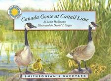 Canada Goose at Cattail Lane (Smithsonian Backyard)