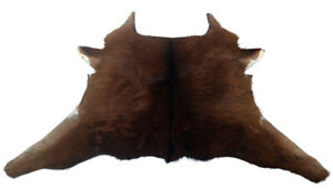 """Cowhide Rugs Calf Hide Cow Skin Rug (26""""x34"""") Brown CH8246"""