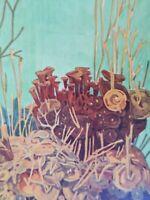 MATHURIN MEHEUT Algue Himanthalia lorea Planche 4 Vol 2 ETUDE DE LA MER MM