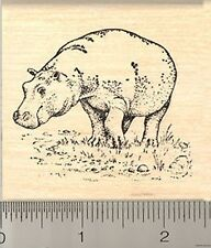 hippo hippopotamus Rubber Stamp H6905 Wood mounted