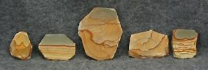 5 PICTURE JASPER SLAB PRE-FORMS LAPIDARY CABBING 83 GRAMS