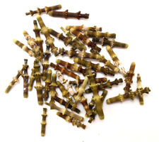 100 Beautiful Tiny Bamboo Sea Urchin Spines 1/2