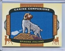 2017 Ud Goodwin Champions Canine Companions Patch Cc35 Spinone Italiano