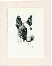 ENGLISH BULL TERRIER OLD DOG HEAD STUDY PRINT FROM 1935 MOUNTED READY TO FRAME