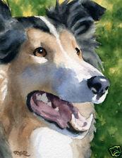 Rough Collie Art Print Dog Painting 11 x 14 by Artist Djr