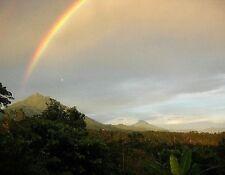 2 lbs Guatemala SHB Huehuetenango Huixoc Medium Roast Coffee Beans Rain Forrest