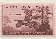 US 1077 Wild Turkey, Wildlife Conservation 3c single MNH 1956